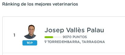 veterinario top